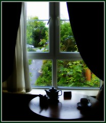 quiet window on Ennis (Maewynia) Tags: green window leaves curtains teapot ennis