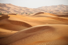 The Desert (liber) Tags: cool dubai desert uncool cool2 cool3 cool4 uncool2 uncool3 uncool4 uncool5 uncool6 uncool7