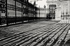 (ángel mateo) Tags: ángelmartínmateo guadix granada andalucía españa sombras catedraldeguadix escaleras blancoynegro verja shadows cathedralofguadix ladders blackandwhite fence ángelmateo sombra shadow monocromo monochrome