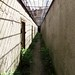 "Prison Yard Run • <a style=""font-size:0.8em;"" href=""http://www.flickr.com/photos/26088968@N02/9477054494/"" target=""_blank"">View on Flickr</a>"