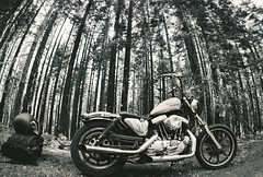 R1-02829-0015 (Garrett Meyers) Tags: california white black film photographer harley motorcycle knight wes davidson redding garrettmeyers