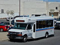 Kingston Transit 1372 (YT   transport photography) Tags: bus chevrolet mini kingston transit cutaway spiritofmobility arboc