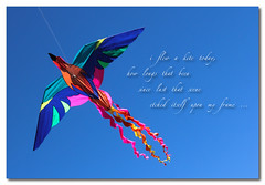 i few a kite today (poemtography) (MyGallery) Tags: kite poetry canonef18135mmis canoneos60d poemtography
