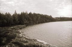 (theknark) Tags: blackandwhite shoreline 35mmfilm analogue waterscape selfdeveloped alternativeprocessing stanleybridge luckyshd100 caffenolc fujiklasse canoscan9000f