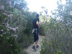 Cabeo d'Or - Vegetacion (motagirl2) Tags: mountain trekking walk alicante dor cabeo busot canelobre cuevasdecanelobre cabeodor covesdecanelobre