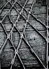 Adelaide Tracks #Australia #dailyshoot (Leshaines123) Tags: light colour monochrome lines contrast train canon eos exposure flickr tracks australia explore adelaide facebook dailyshoot anawesomeshot dazzlingshot vividstriking leshaines