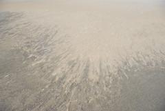 Dakhla (tanjaseidemann) Tags: polisario sadr westernsahara rasd saharaoccidental westsahara saharaoccidentale saraocidental vstsahara vestsahara lnsisahara vestursahara zpadnsahara