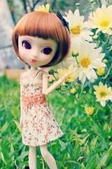 Bob style (♥Moonchild Silverdream♥) Tags: doll wig groove pullip custom leeke obitsu rewigged stica obitsued