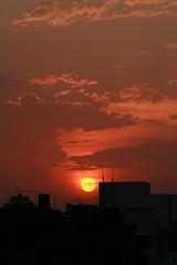 Sunset Sky Patna (saish746) Tags: light sunset cloud dog pet flower cute festival fruit milk lab worship labrador prayer fast retriever clay idol donnie lovely breed puja haldi mantra lota bihar patna chandan teej 2013 sindoor teez lpsky lpsky2