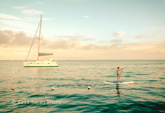 ? of the Day: Anyone Know Where Beez Is (Karen Brodie Photography) Tags: ocean sea people woman seascape nikon belize catamaran ambergriscaye paddling sanpedro paddleboard dsc6651 d3s