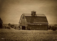 Illinois Antiquity (MEaves) Tags: sepia barn illinois midwest cupola weathered toned textured ruralamerica farmstructure
