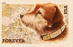 usa dog stamp forever postage 2011