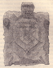 Arnott shield