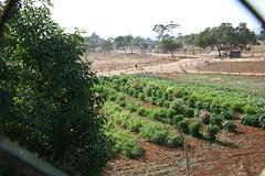 Protur Natura Farm