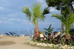 Chilling on the beach (Picturos404) Tags: sea sky seascape beach clouds palm greece corfu ionian