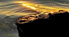 Evening rock (eikeblogg) Tags: rock lowsun sunset rays eveninglight moods reflections surface water lakeside silence