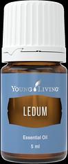 Ledum_5ml_AUS_Silo_2016 (Young Living Essential Oils) Tags: essential oil oils single singles aus australia