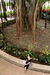 20070830-IMG_8156.jpg (Captain Ed) Tags: halekoahotel hawaii oahu ssregalprincess southpacificcruise banyantree