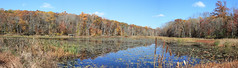 Whites Mill Panorama (Montgomery County Planning Commission) Tags: wetlands openspace montgomerycountypa whitesmill salfordtownship