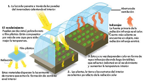 construccion_invernadero
