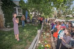 _R7A6146 (DU Internal Photos) Tags: garden outdoorgarden sazza sazzaworkshop