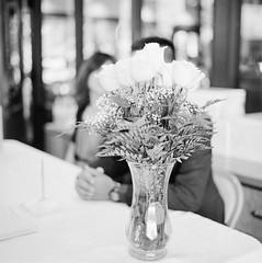 Flower at reception table (Chemophilic) Tags: flower 6x6 mediumformat kodak 400tx hasselblad 80mmf28 proxar1