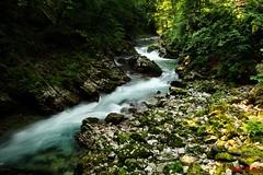 Parchi del Triglav - Gola Vintgar (Sigma SD1, Foveon) (BeSigma) Tags: parco lago sigma natura slovenia alpi viaggio vacanze grotte merrill foveon triglav cascate sd1 giulie x3f