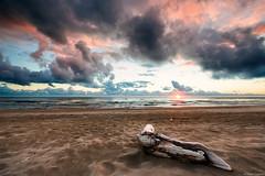 Relitti #12 (Corsaro078) Tags: sunset seascape tree landscape tramonto wreck albero relitti