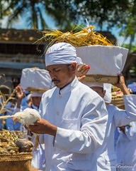 Animal offerings (Arnaumb) Tags: travel flowers people bali white color colour men beach indonesia 50mm community women dress religion pray ceremony hats traditions blessing ritual mf nikkor hindu ai offerings d600 galungan earthasia