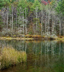 BLACK ROCK LAKE REFLECTIONS (Wolf Creek Carl) Tags: autumn trees lake nature reflections georgia landscape outdoors blackrockmountainstatepark nikond7000