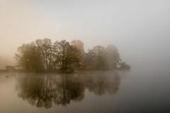 foggy island (mkniebes) Tags: morning november autumn trees sea lake nature water misty fog sunrise germany landscape island early foggy ducks bochum ruhr goldenhour 8d nikonafzoomnikkor3570mm2