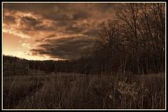 Version 3 (brev99) Tags: sunset blackandwhite landscape lowlight nik sunsetlight sigma1770os photoshopelements9 topazbweffects