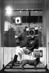 Camera Heads, Verona (D.J. De La Vega) Tags: leica italy dog window shop italia verona x1