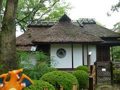 Charizard in Hiroshima, Hiroshima 21 (Shukkei-en Garden) (Kasadera) Tags: toys hiroshima figure pokemon pokmon  charizard   glurak  shukkeiengarden pokemonkids   dracaufeu
