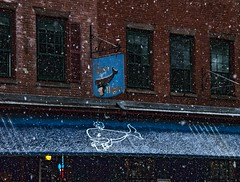 Thirsty Whale (Rusty Russ) Tags: street snow storm sign boston bar photoshop square yahoo google flickr december state image market north grill national shore whale outline flakes geographic thirsty bing