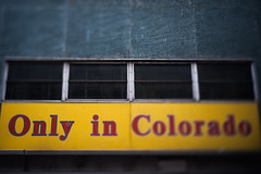 Only what? (Michael Mendonca) Tags: christmas street city trip travel portrait people panorama blur wet mall dark lens 50mm grey lights store aperture nikon colorado downtown place bokeh thing background 14 free sigma denver pale software only photomerge nik middle process breckenridge 16th effect depressing tiltshift brenizer freelens