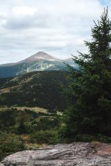 Mountain (Oleh Slobodeniuk) Tags: road travel wild summer mountains tree green nature beauty stone pine horizon ukraine fresh journey range carpathian hoverla