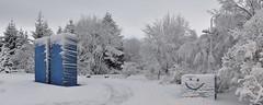 Frosin er hún Fyssa mín :) (Sig Holm) Tags: snow art iceland artwork frost january list reykjavík ísland tré islande photostitch snjór 2014 kuldi janúar laugardalur listaverk grasagarður fyssa rúrí grasagarðurinnílaugardal