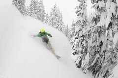 """Row yer boat trees"" Chance Roe Creek Feb 22,23 2014      -6 (Pat Mulrooney) Tags: snow canada zoe whistler ross britishcolumbia danielle powder g3 sled squamish snowmobile skitouring seatosky coastmountains arcteryx chancecreek backcountrysnowboarding roecreek g3skins patmulrooneyphotography skidoosummitrevxm g3blacksheepcarbon"