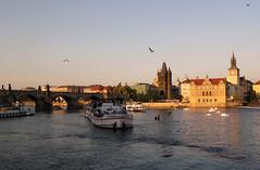 IMG_1206_1 (Valeria_Moretti) Tags: bridge sunset birds san charles praga most carlo vltava pague karlv moldava