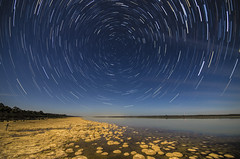 Star Trails over Lake Clifton's Thrombolites (inefekt69) Tags: longexposure nightphotography lake water night rural stars nikon space australia stack tokina explore southern galaxy astrophotography perth astronomy stacking dslr 11mm clifton cosmos westernaustralia stacked startrails cosmology mandurah southernhemisphere lakeclifton explored startracks starcircles thrombolites 1116mm startrailsexe startracing d5100