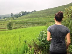 Terrasse de riz Yuanyang