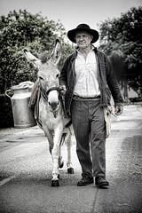 Le livreur de lait (zebrazoma) Tags: lait laiterie milk âne donkey old fashion surrané outdated portrait paysan farmer dairy