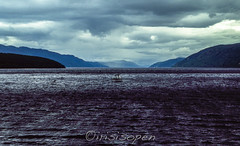 Das Boot # Loch Ness # 219 # Nikon F501 Dia -_ (íṛíṡíṡôṗĕñ ◎◉◎) Tags: nikon f f501 af film analog diafilm colorslide umkehrfilm farbe irisisopen