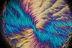 NAC (masterpieceinside) Tags: underthemicroscope microscopy microscope microscopic micro sciencebitch sciart scienceandart vista ihavethisthingwithcolor colorstory colorhunters colorway psychedelicart vibrant smallworld microworld hiddenworld hiddenart hiddenbeauty microlandscapes nikonphotography nikond3400 chemart microscopicworlds science chemistry psychedelic texture design structure bold microart artsci microlandscape crystals crystallize crystalgrowing polarizedlight abstractphotography artscience microimages trippy abstract labstuff microscopeart microphotography smallaf abstractart swirl