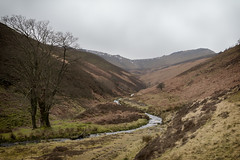 Kinder Scout-1-4 (half man half fuji) Tags: kinder scout derbyshire fairbrook cascade waterfall national park countryside walking hiking canon eos 80d 1740l