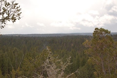 "bryce_186 • <a style=""font-size:0.8em;"" href=""http://www.flickr.com/photos/67316464@N08/8836771024/"" target=""_blank"">View on Flickr</a>"