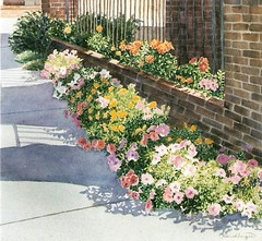 City Petunias - watercolor