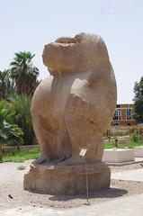 El-Ashmunein Open-Air Museum Baboons 02 (eLaReF) Tags: openairmuseum baboons elgebel tunaelgebel templeofthoth tunaelgebell elgebell
