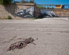 Tom Fennell (billy craven) Tags: streetart chicago photography graffiti photo exhibition lunapark shotfromthehip peterangel senorcodo galerief sergejvutuc brockbrake httpill oscarfotoflow dianeribaupierre tomfennel edenleafy